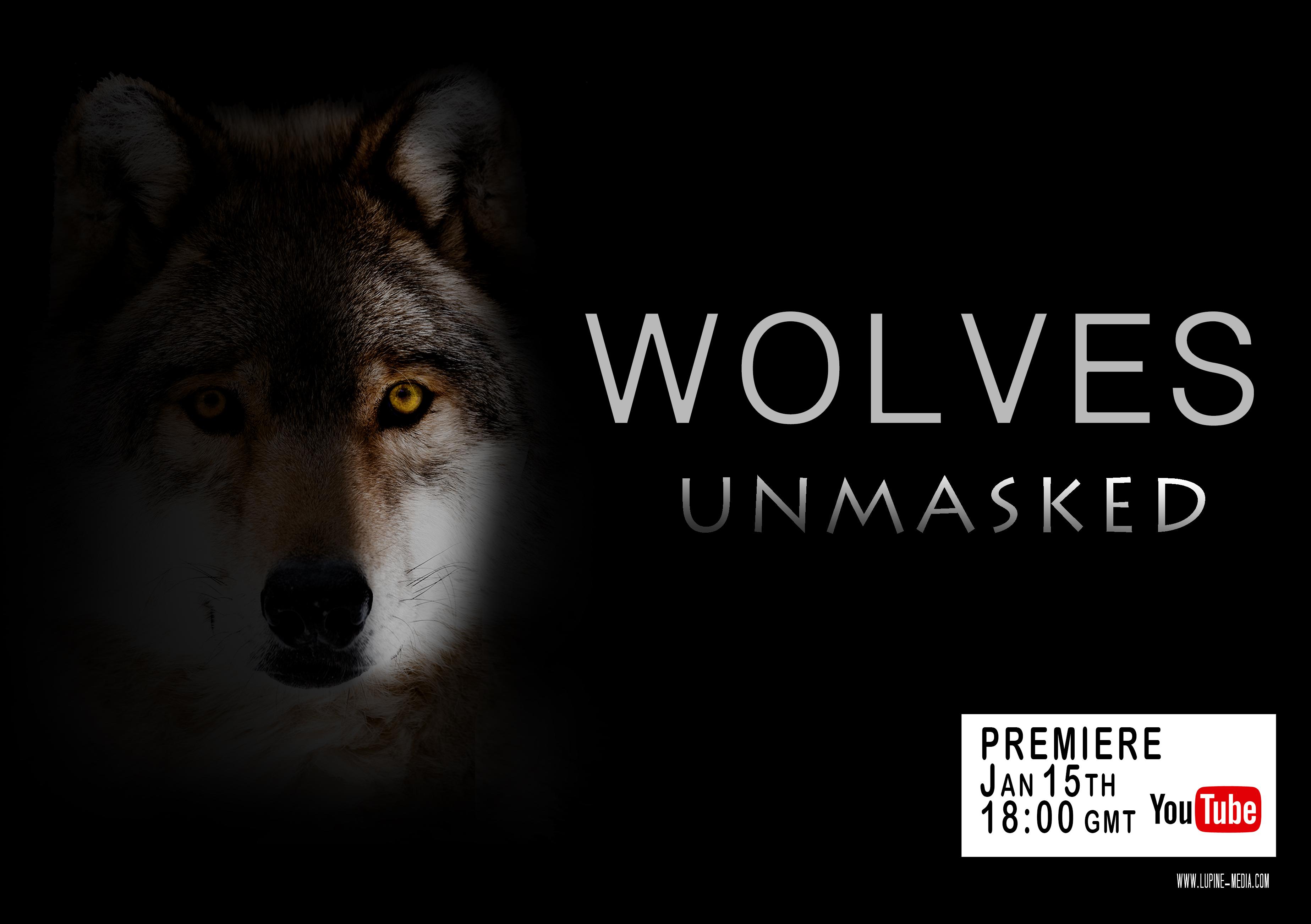 Wolves Unmasked Premiere